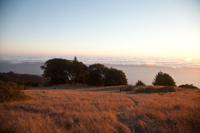 mt-tam-trail-sunset